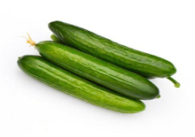 Organic Green Cucumber Medium Size