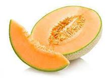 Rock-Melon