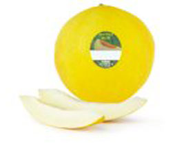 Grower's Selection Honeydew Melon